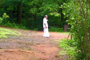 Mr Kareem's Forest in Kerala