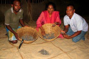 Supraja Dharini_Turtle Conservation