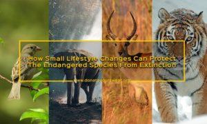 Endangered Species Conservation