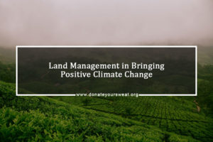 Land Management and climate change