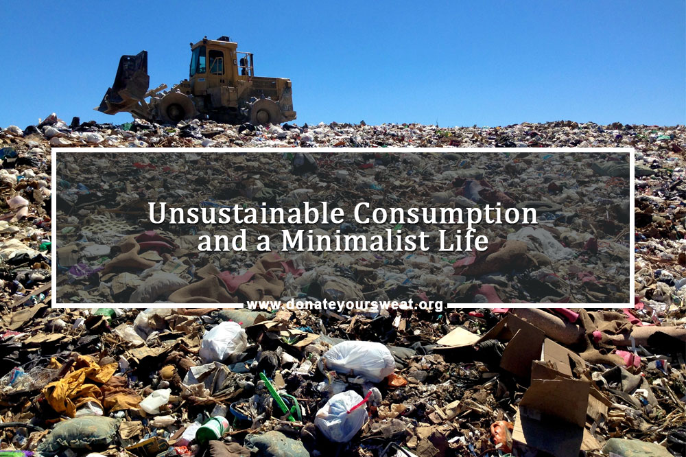 Unsustainable Consumption and a Minimalist Life
