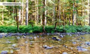 fresh water resource manageement
