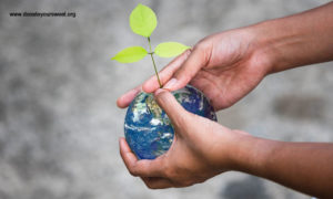 Importance of Climate Change in SDGs